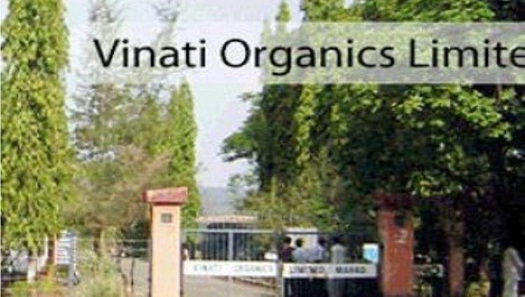 Vinati organics ipo price
