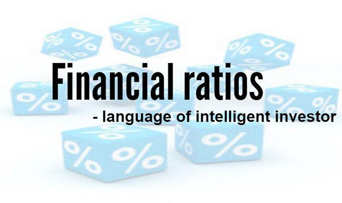 key financial ratios